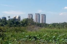 Bồi thường đất canh tác nằm trong diện quy hoạch quận thanh trì.