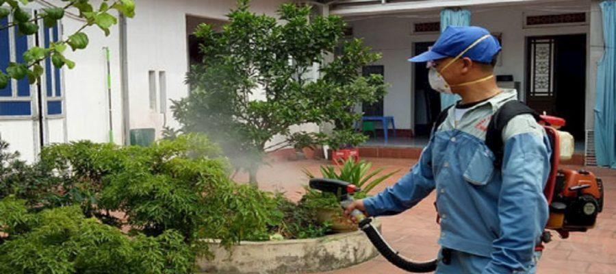 Phun thuốc diệt muỗi tại công ty kiểm soát côn trùng hàng đầu Việt Nam (2)